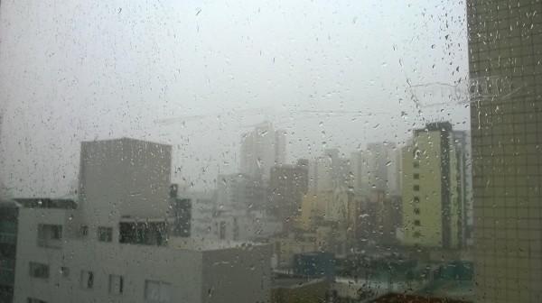 letni deszcz / summer rain